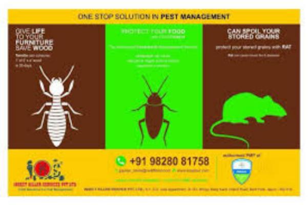 مؤسسة مكافحة الحشرات بالدمام